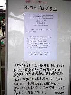 20150404平野神社(その35)