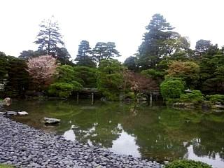 20150405京都御所(その40)