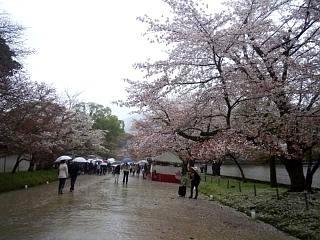 20150405醍醐寺(その5)