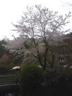 20150405醍醐寺(その23)