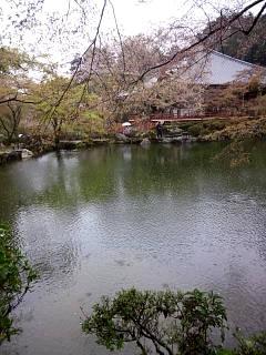 20150405醍醐寺(その25)