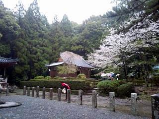 20150405醍醐寺(その30)