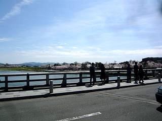 20150404嵐山渡月橋(その16)