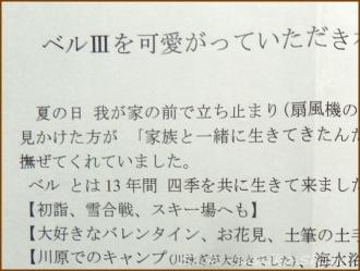 20150912 手紙 2  ベルちゃん