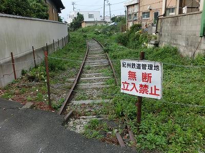 CIMG5995.jpg