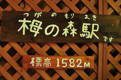 DSC_0944_20150923053158144.jpg