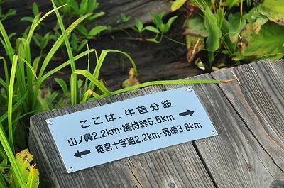 DSC_9307_20150910061518138.jpg