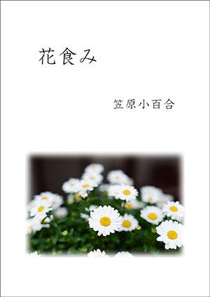 hyoshi_last03.jpg