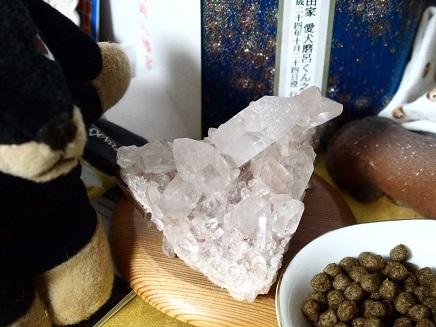 水晶はマロちゃんの所に置いた
