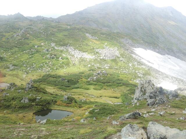 トムラウシ山下山道