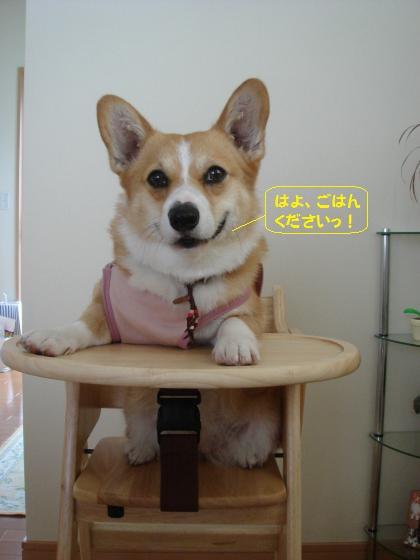 ちびっこ椅子の節ちゃん