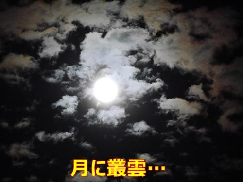 4中秋の名月