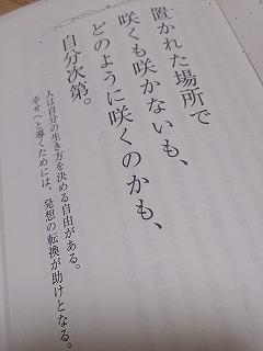 DSC_1281qa.jpg