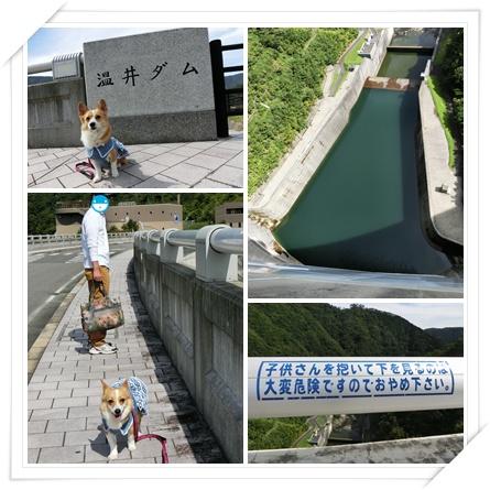 温井ダム1