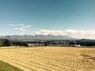 稲刈り2015101902
