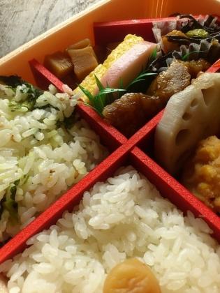 崎陽軒夏の味わい神奈川弁当2