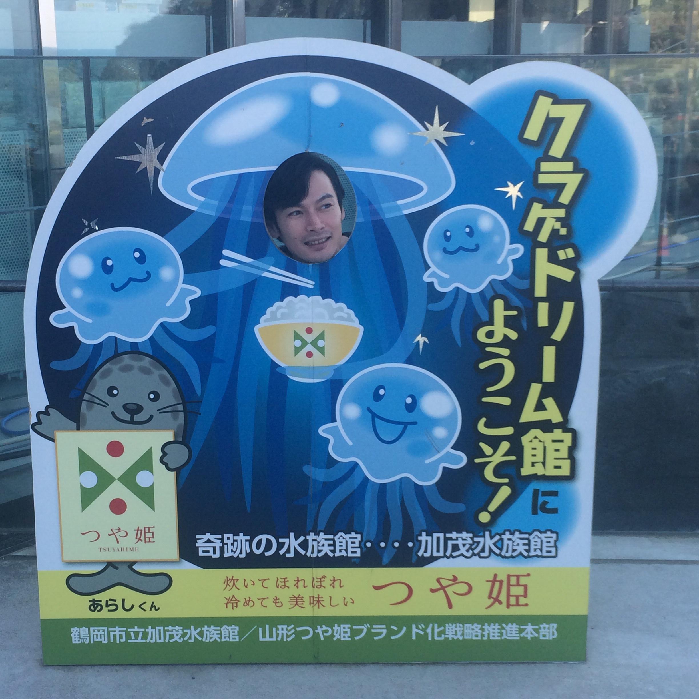 山形県 鶴岡市 加茂水族館 顔ハメ看板