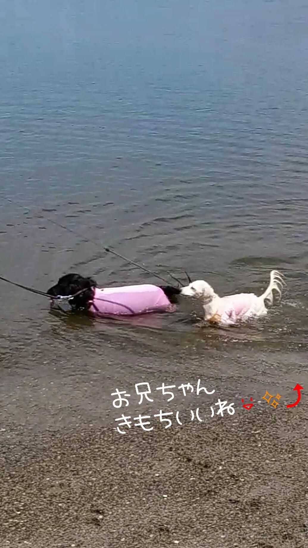 150907_odaiba_02.jpg