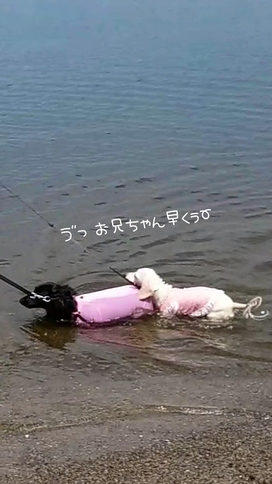150907_odaiba_03.jpg