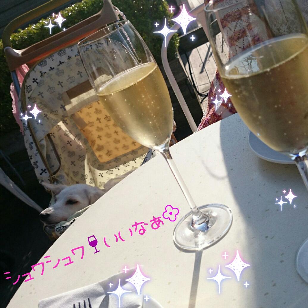 150922_odaiba2_01.jpg
