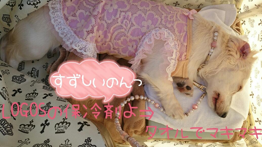 150922_odaiba2_05.jpg