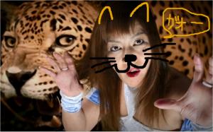猫田にゃん