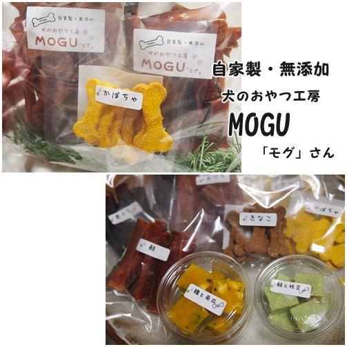 MOGUさん