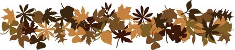 leaf0059.jpg