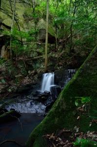 女王滝へ行く途中の小さな滝