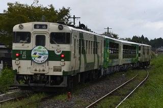 kzkk82829 (8)