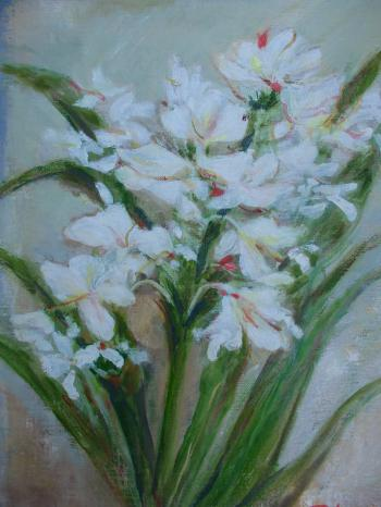 Webジンジャーの花