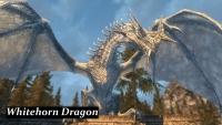 cd_dragon_1_4_026.jpg