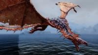 dragon06.jpg