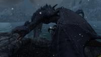 dragon08.jpg