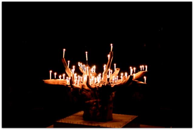 青森県 八戸市 スポーツクラブ 夏休み 行事 イベント 合宿 キャンプ 記録 写真 撮影 カメラマン 出張 委託 派遣 同行