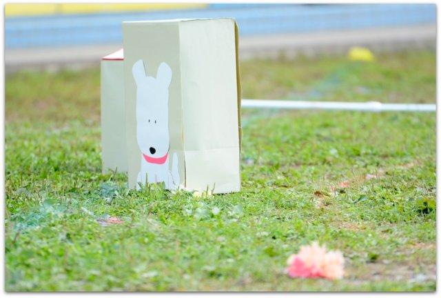 青森県 弘前市 保育所 保育園 幼稚園 運動会 リハーサル 写真 撮影 スナップ カメラマン 出張 委託 派遣 同行 インターネット 写真 販売