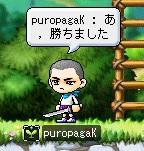 puropagaK4-2.jpg