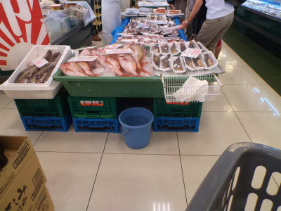 9.5魚屋3
