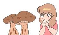 松茸食べたい