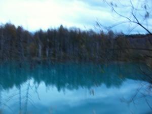 秋青い池 008