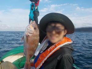 DSCN0987 なんとマダイを釣りました