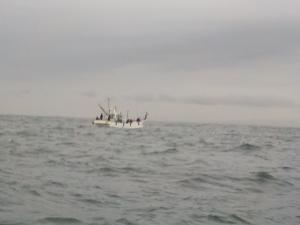 DSCN1023 遊漁船がすでに荒らしてる
