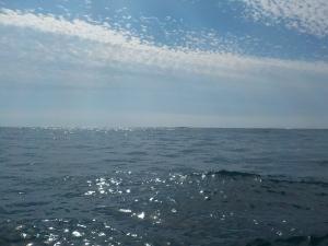 DSCN1122 浅場は凪だけど魚いない