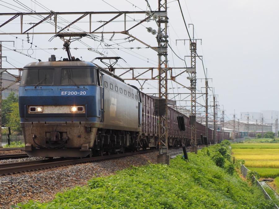 EF200 20 20150829