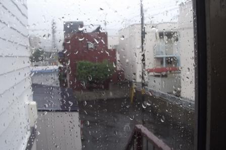 こちらも雨