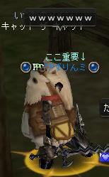 猫+ひばりんミ