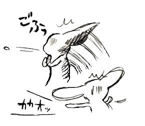 3595 - コピー - コピー