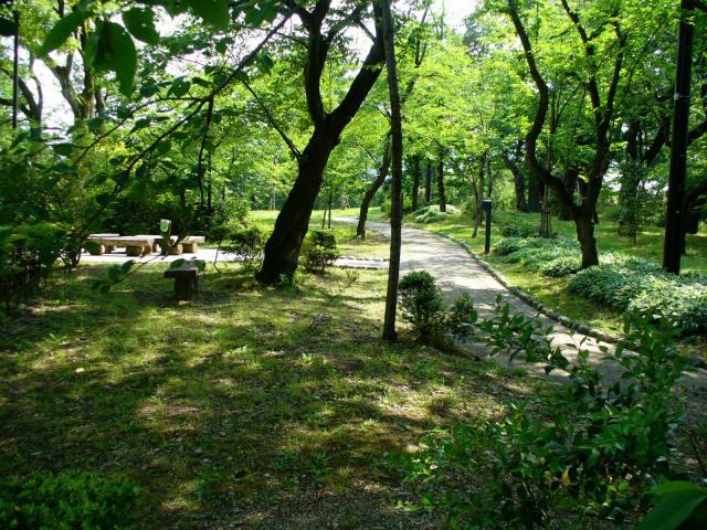 高岡古城公園5