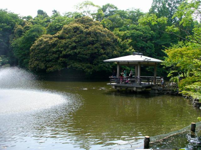 高岡古城公園8