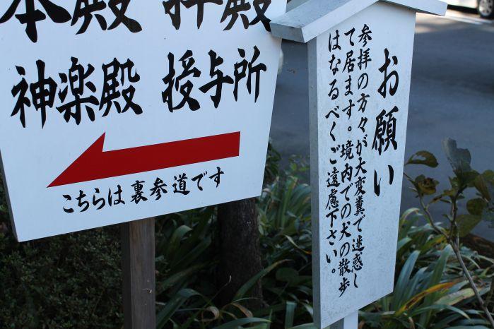 39高千穂神社2